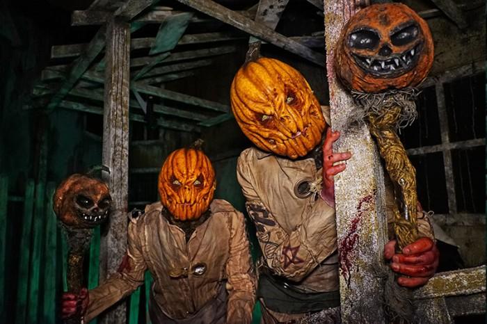 putrid-pumpkin-gallery.jpg